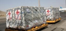 First Batch of Sinopharm Vaccines Donated by China Arrives in Kabul
